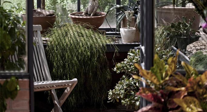 amenager un jardin d 39 hiver alterego design. Black Bedroom Furniture Sets. Home Design Ideas